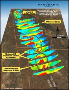 Wilsons IP survey pseudo-sections over Landsat image